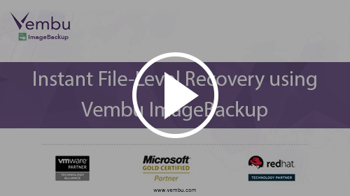 Instant File-level Recovery using Vembu VMBackup